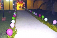baloes carolfestas (20)